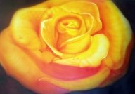 FLOWER - Airbrush Artwoks
