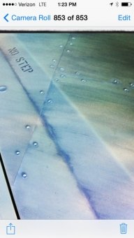 Airbrushed hood  - Airbrushed