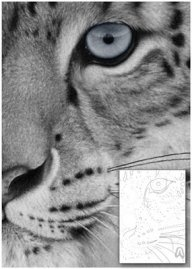 Airbrushing the leopard! More on #FuriousAirbrush,com - Airbrush Step by Step