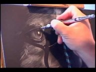 ▶ Scratchboard Workshop - Airbrush Videos